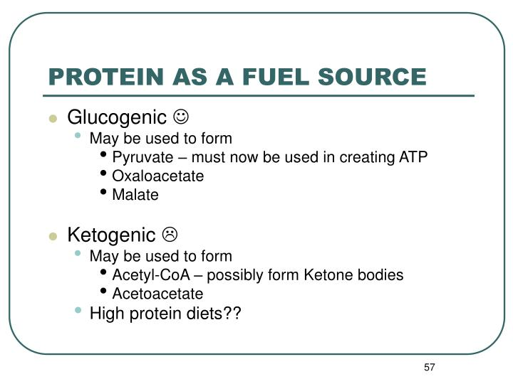 PROTEIN AS A FUEL SOURCE