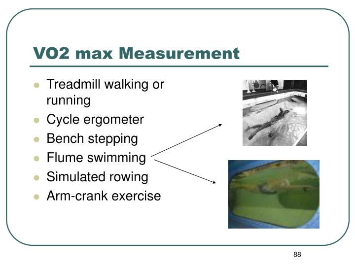 VO2 max Measurement