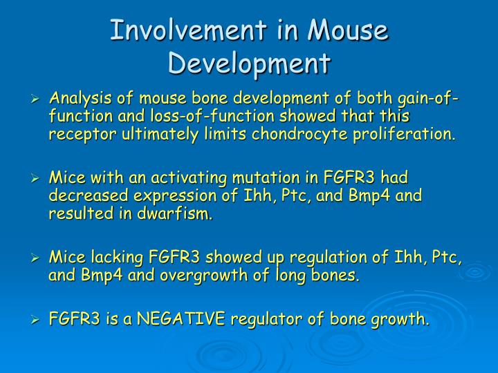 Involvement in Mouse Development