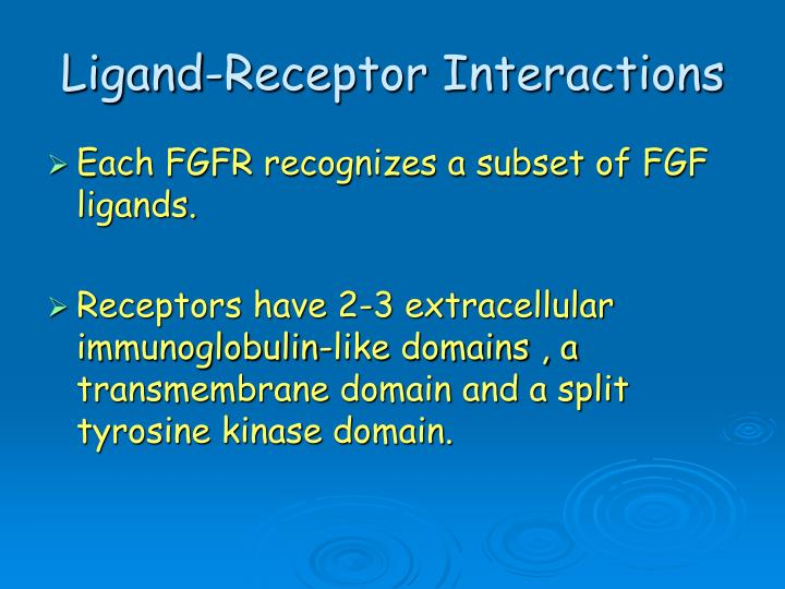 Ligand-Receptor Interactions