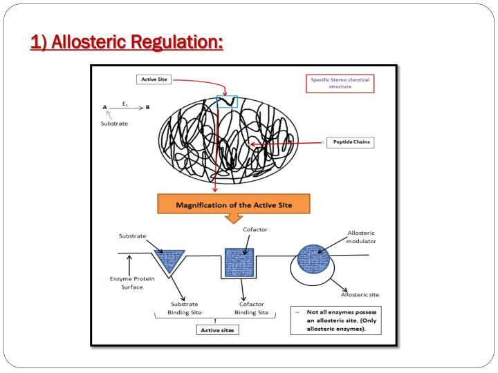 1) Allosteric Regulation: