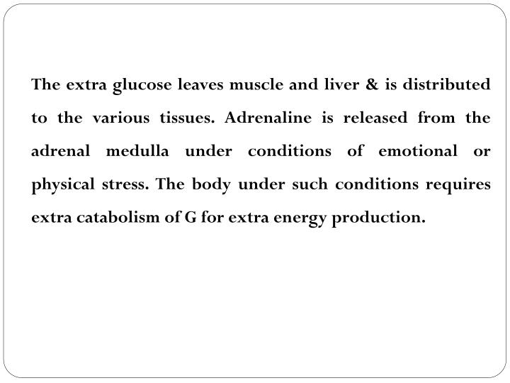The extra glucose leaves muscle and liver & is distributed to the various tissues. Adrenaline is released from the adrenal medulla under conditions of emotional or physical stress. The body under such conditions requires extra catabolism of G for extra energy production.