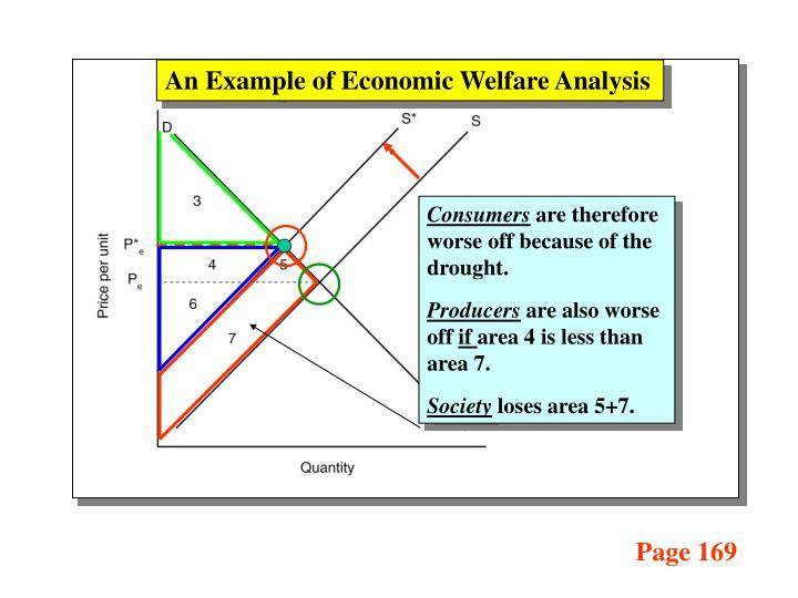 An Example of Economic Welfare Analysis