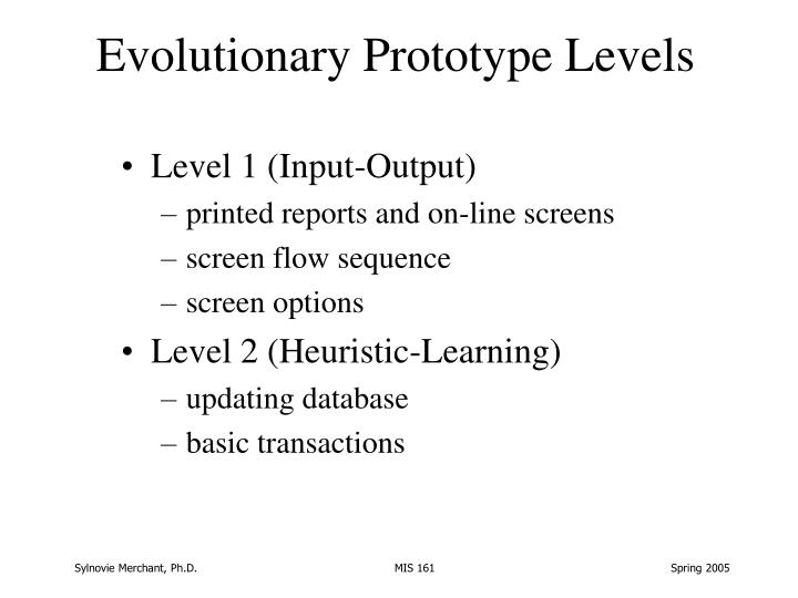 Evolutionary Prototype Levels