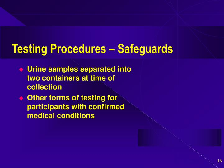 Testing Procedures – Safeguards