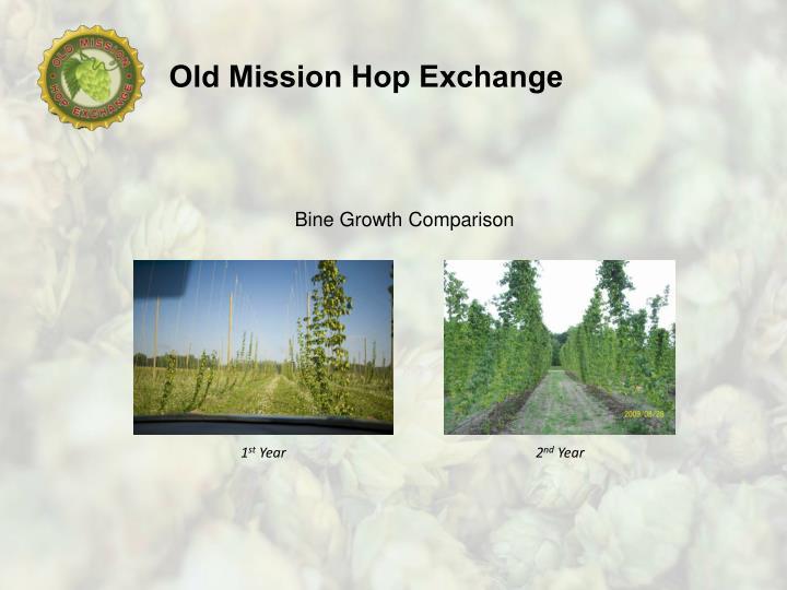 Bine Growth Comparison