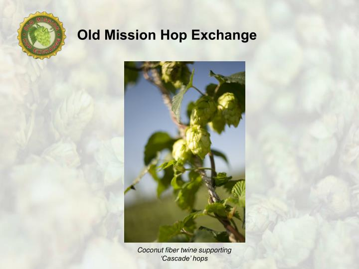 Coconut fiber twine supporting 'Cascade' hops