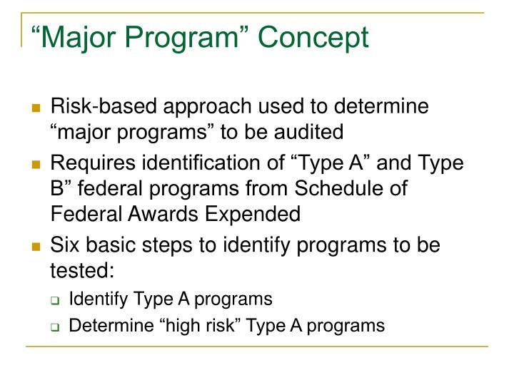 """""""Major Program"""""""