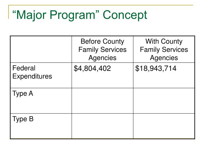 """Major Program"" Concept"