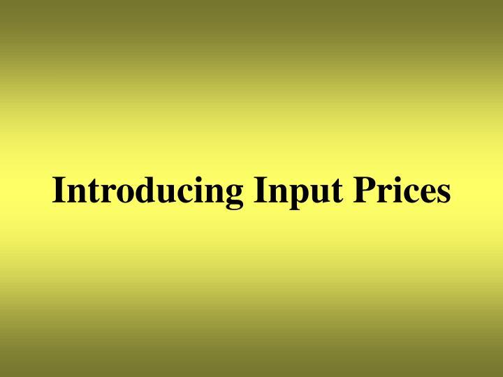 Introducing Input Prices