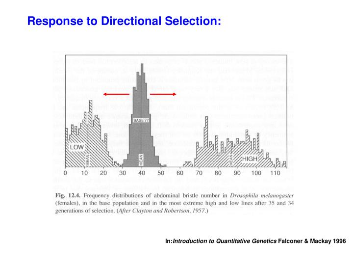 Response to Directional Selection: