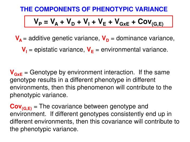THE COMPONENTS OF PHENOTYPIC VARIANCE
