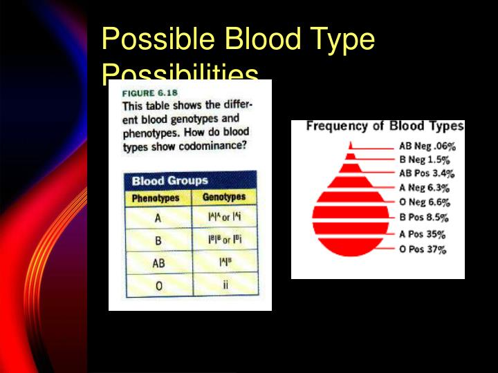 Possible Blood Type Possibilities