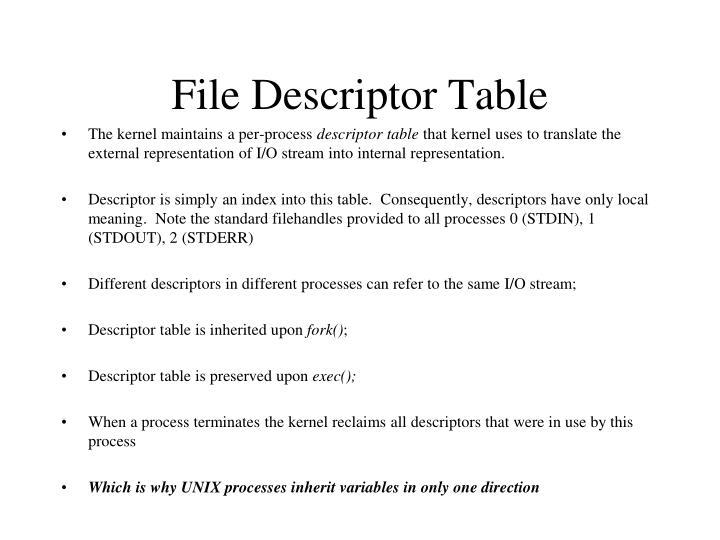 File Descriptor Table