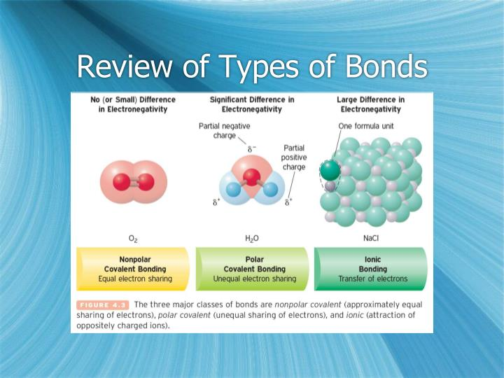 Review of Types of Bonds
