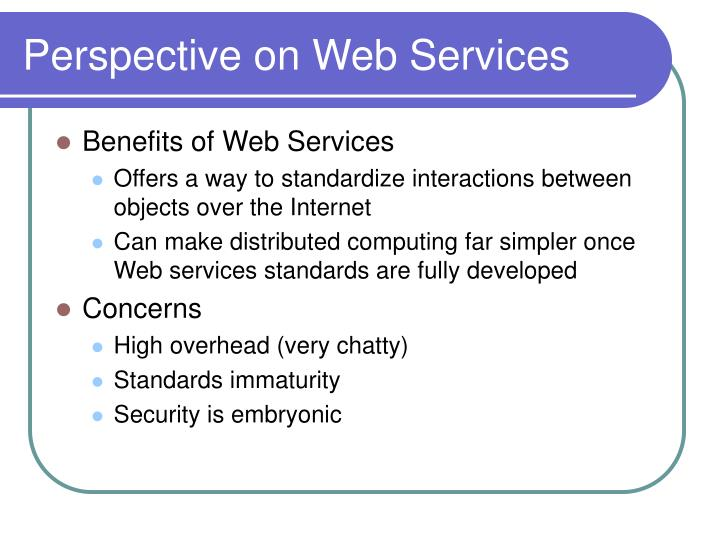 Perspective on Web Services