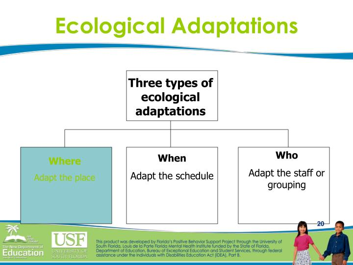Ecological Adaptations