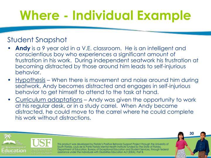 Where - Individual Example