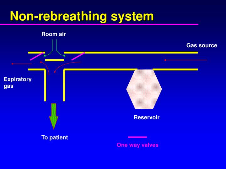 Non-rebreathing system