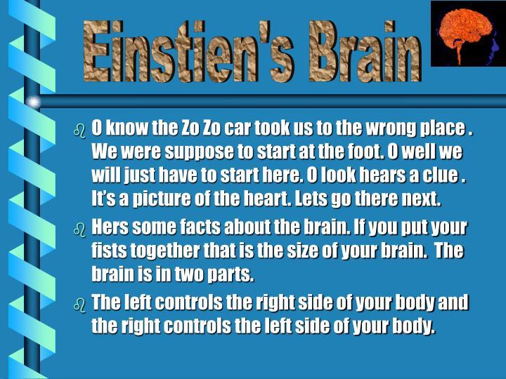 Einstien's Brain