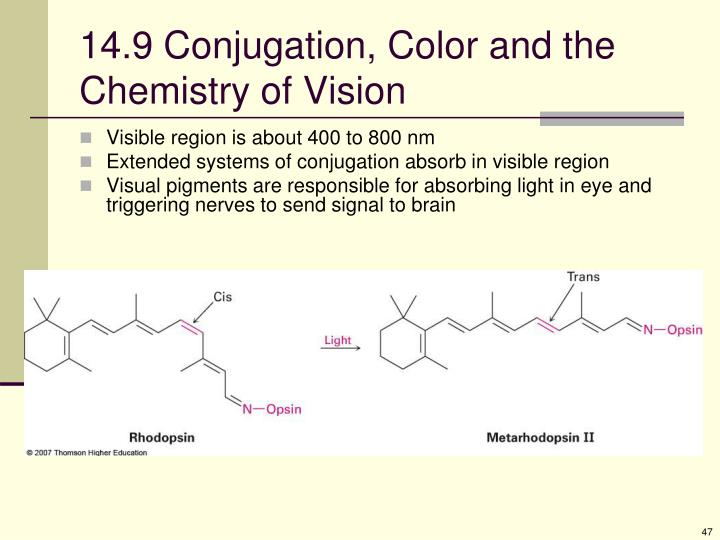 14.9 Conjugation, Color and the Chemistry of Vision