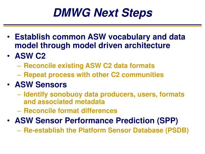 DMWG Next Steps