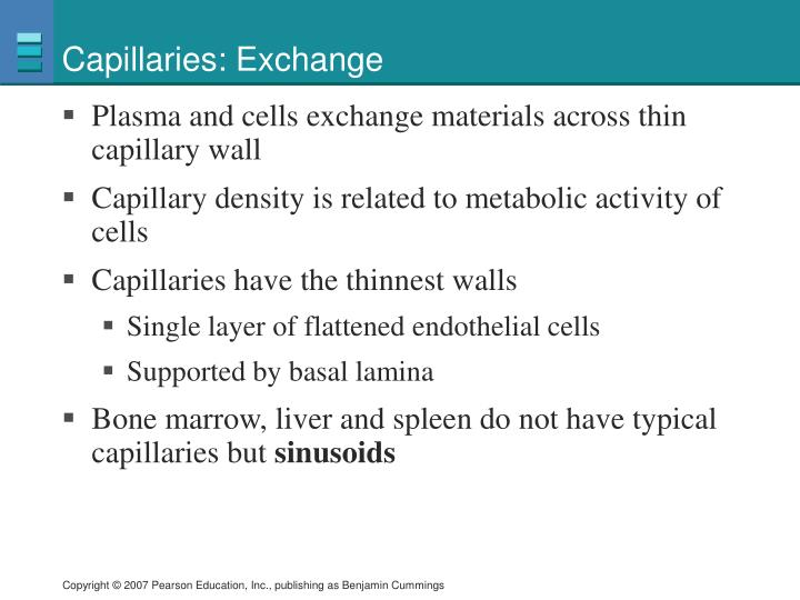 Capillaries: Exchange