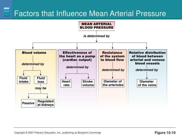 Factors that Influence Mean Arterial Pressure