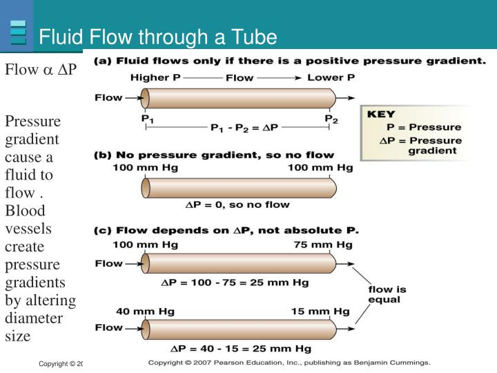Fluid Flow through a Tube