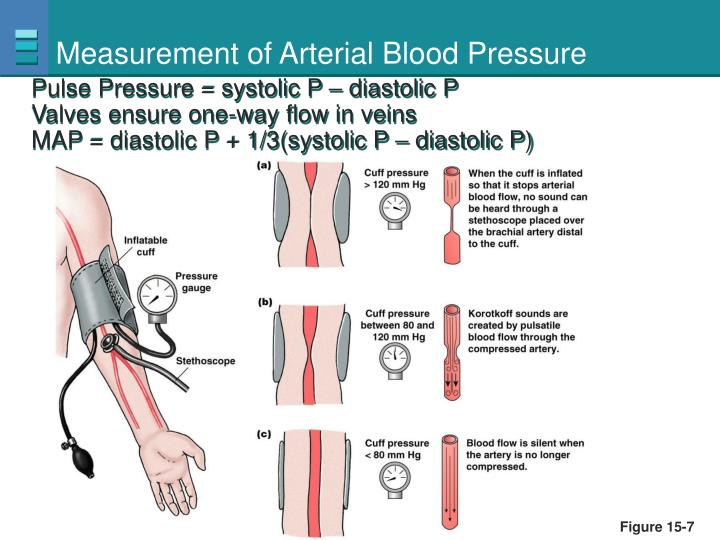 Measurement of Arterial Blood Pressure