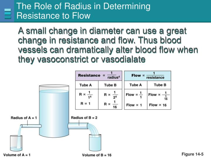 The Role of Radius in Determining
