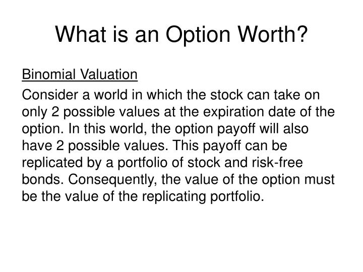 What is an Option Worth?