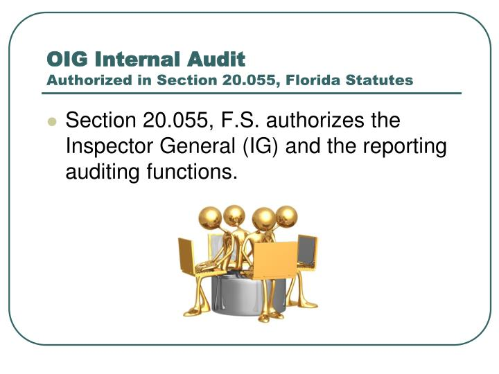 Oig internal audit authorized in section 20 055 florida statutes