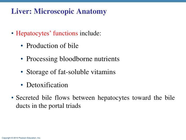 Liver: Microscopic Anatomy