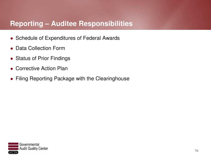 Reporting – Auditee Responsibilities