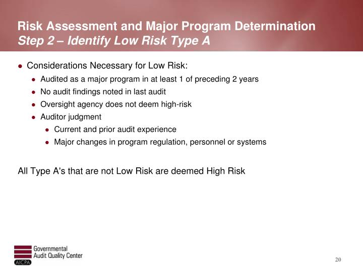 Risk Assessment and Major Program Determination