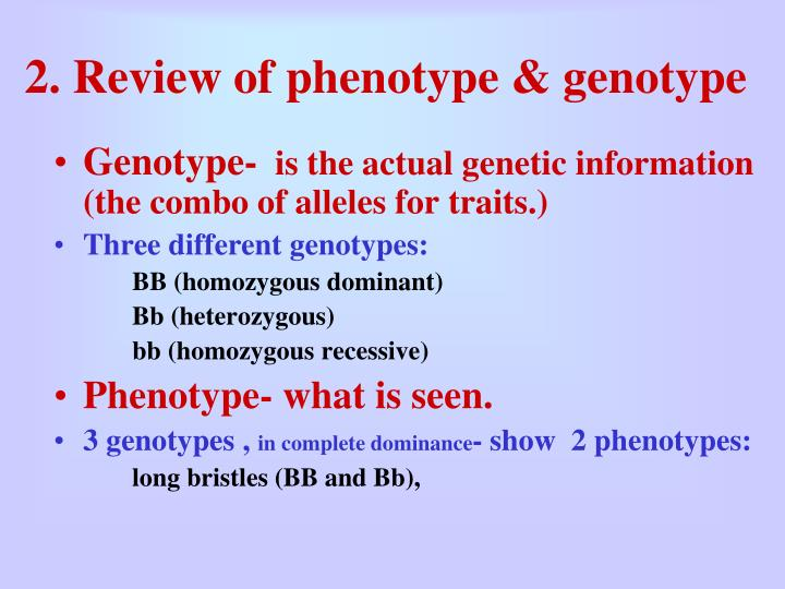 2. Review of phenotype & genotype