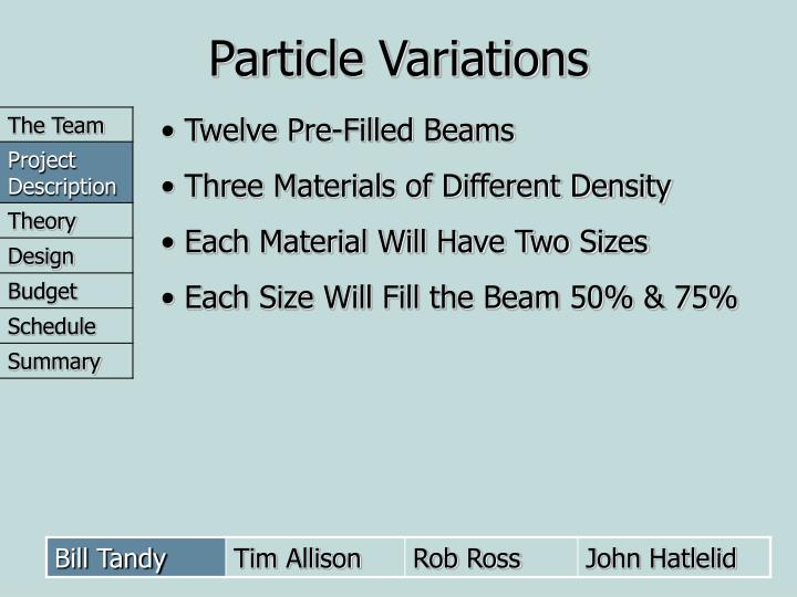 Particle Variations