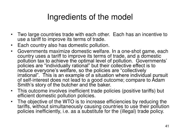 Ingredients of the model