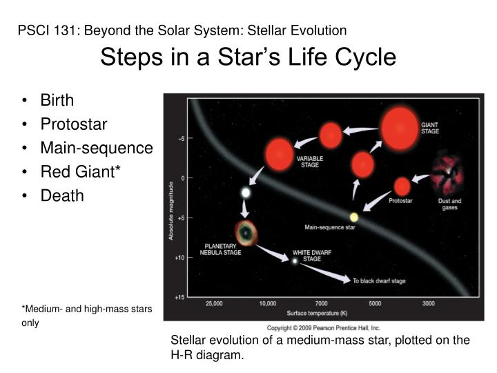 Steps in a Star's Life Cycle