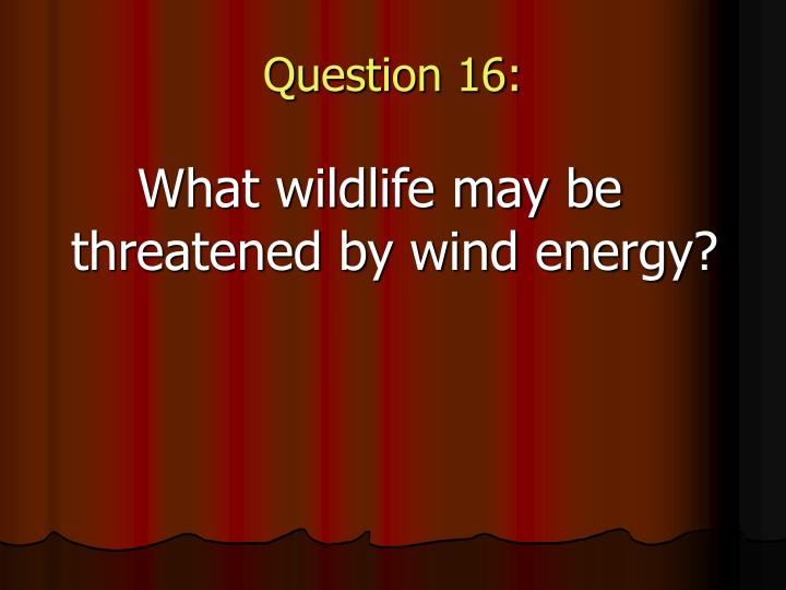 Question 16: