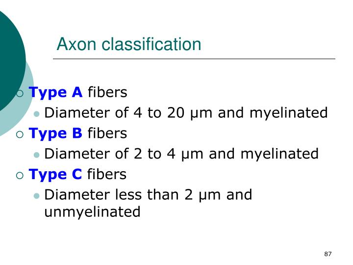 Axon classification