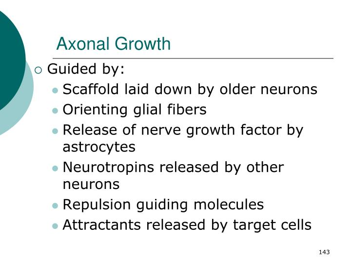 Axonal Growth