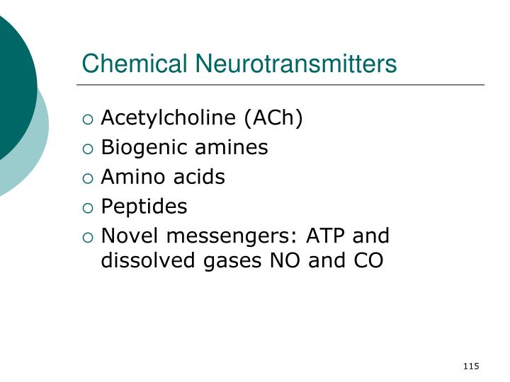 Chemical Neurotransmitters