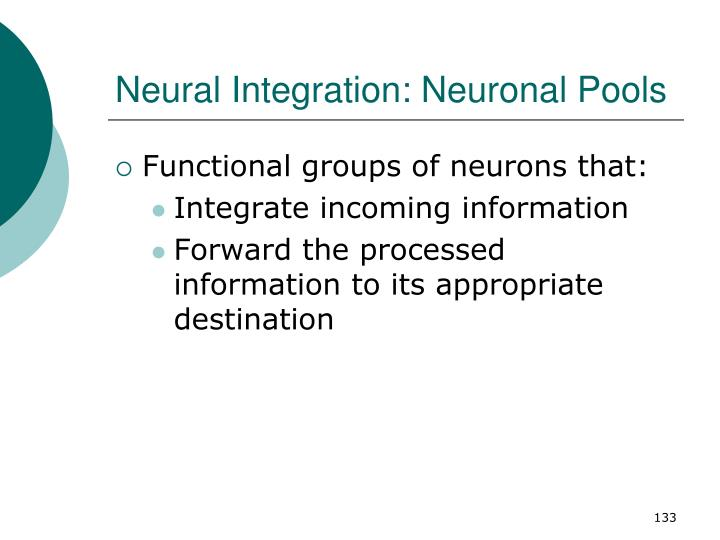 Neural Integration: Neuronal Pools
