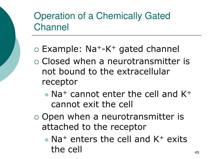 Operation of a Chemically Gated Channel