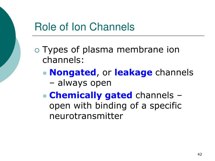 Role of Ion Channels