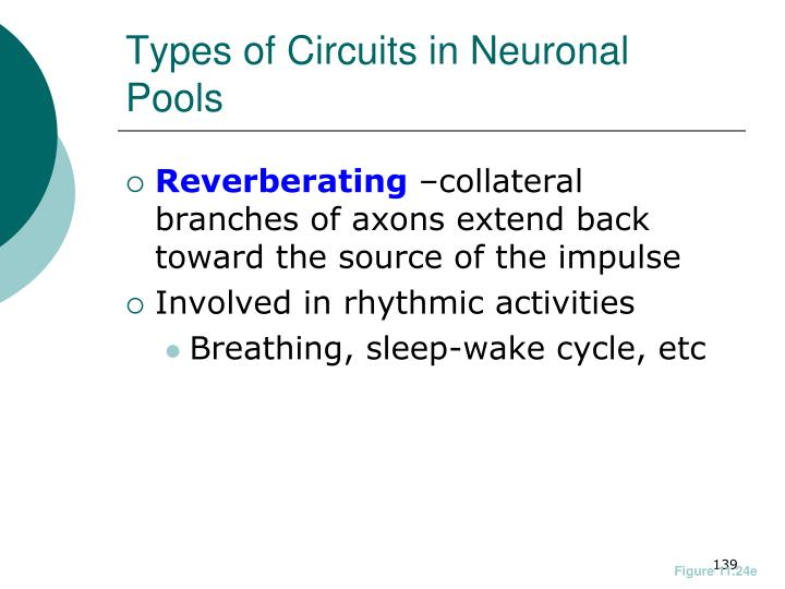 Types of Circuits in Neuronal Pools
