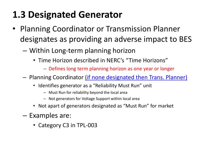 1.3 Designated Generator