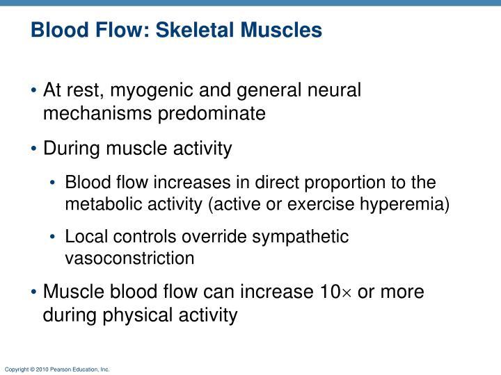 Blood Flow: Skeletal Muscles